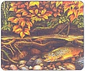 Brown Trout Mouse Pad